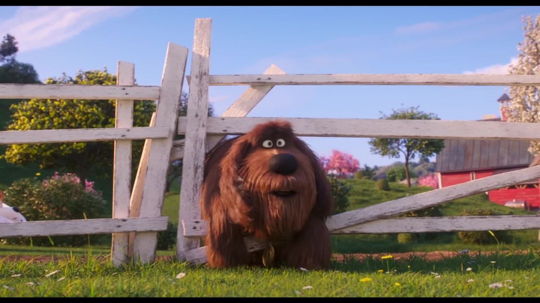 The Secret Life Of Pets 2 - The Rooster Trailer Watch Online in HD